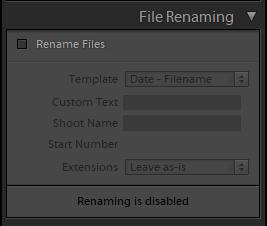 Панель переименования файлов при Импорте